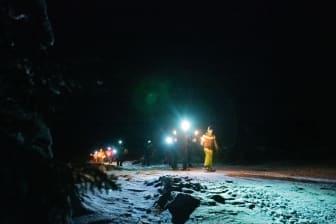 Trugetur i vintermørket