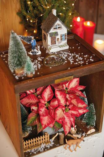 Miniatyrlandskap med julstjärnor