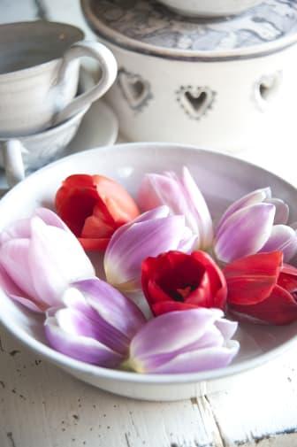 Tulpanblommor i skål