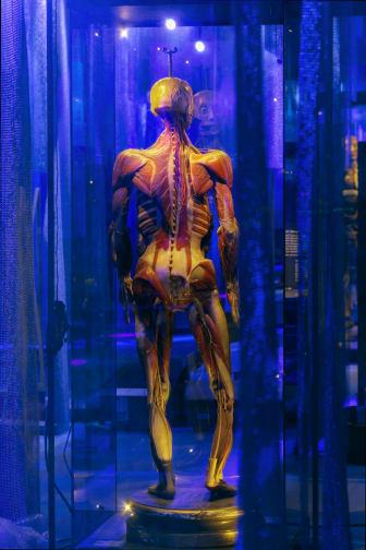 Muskelmannekäng från 1800-talet i Hyper Human