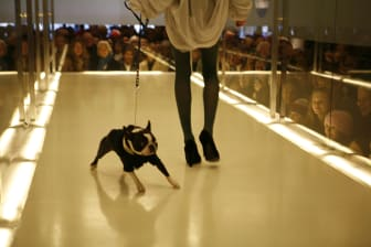 Dogs On Catwalk - NK Stockholm