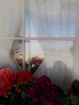 Fönster med spegelbild.JPG