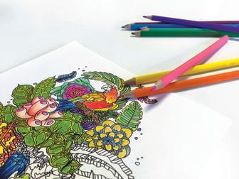 I det siste har flere og flere voksne funnet fram fargeblyanter og tusjer og satt seg ned med fargeleggingsbøker