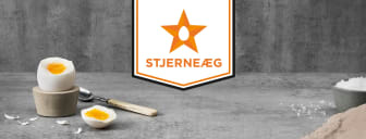 Banner Stjerneaeg