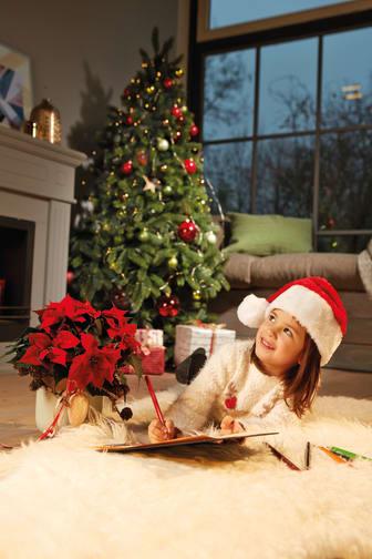 Julpyssel vid granen med julstjärnor