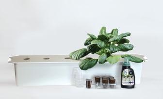 Startkit för hydroponisk odling Harvy från Nelson Garden