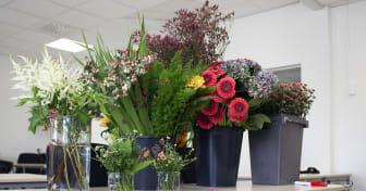 CVS blommor.jpg