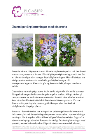 Charmiga vårplanteringar