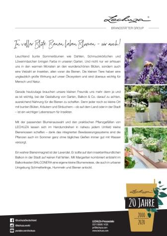In voller Blüte: Bienen lieben Blumen - wir auch!
