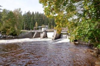 Dammen i gamla åfåran, Fridafors.