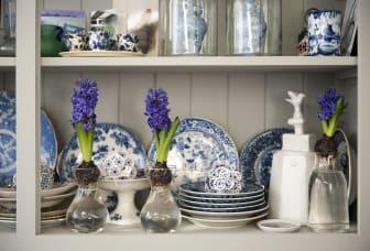 Hyacinter i glasvas