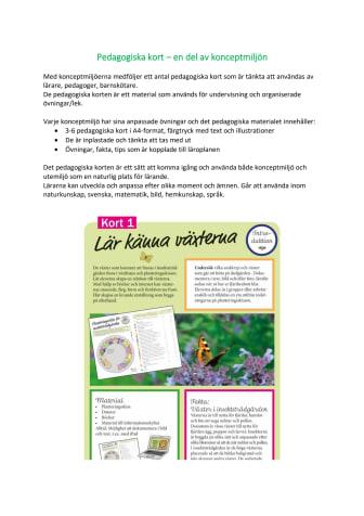 Förklaring till pedagogiska kort