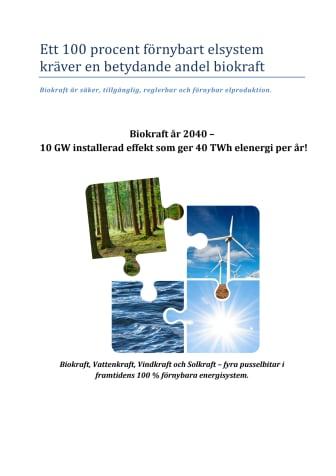 Rapport från Biokraftplattformen