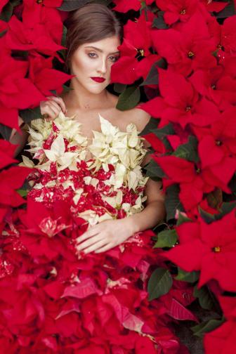 Julstjärnor som klänning