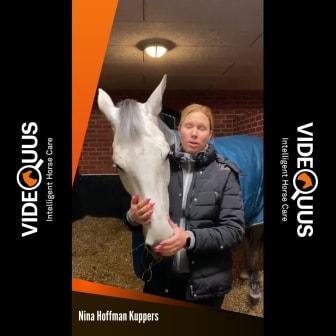 Nina Hofmann Küppers om när Videquus larmade när hennes häst fastnat