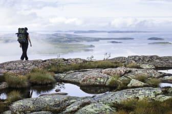 Vandring i Skuleskogen nationalpark