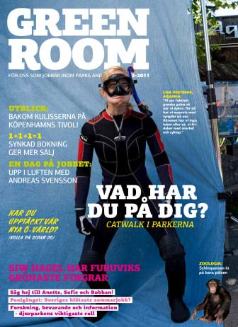Green Room Nr 3 2011
