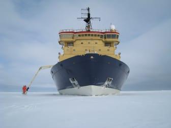Isbrytaren Atle i isen