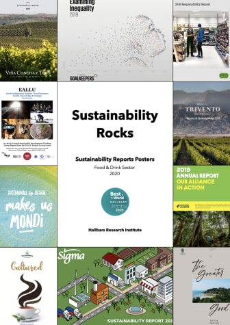 Sustainability Rocks