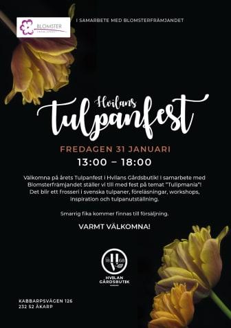 Hvilans_tulpanfest