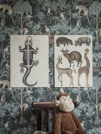 Wildjungle-3_Image_Roomshot_ChildrensRoom_Item_7463_0005_PR