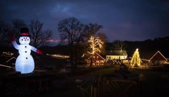 Djurens Jul i Skånes Djurpark