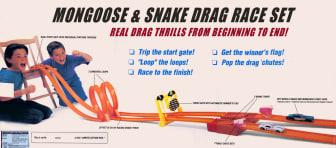 Mongoose snake back