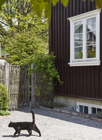 TJÆREBRUN FR9115.jpg