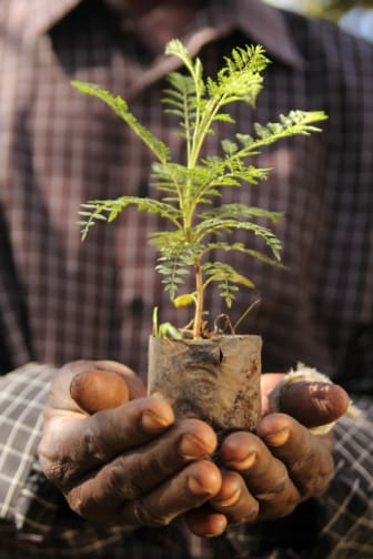 Gilbert Wanyama SinokoVillage Kitale Ke March_2014_Webb Fullbredd story