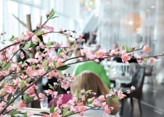 Restaurang Picnic, på Radisson Blu Hotel, Uppsala