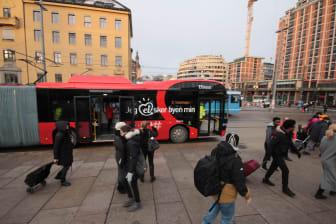 Elbuss linje 31