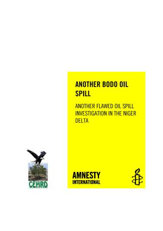"""Nigeria: Utredningar om oljeläckor i Nigerdeltat """"ett fiasko"""""""
