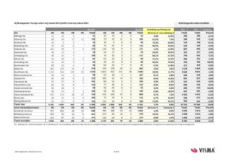 Vismas rapport för nyföretagandet (maj 2015)