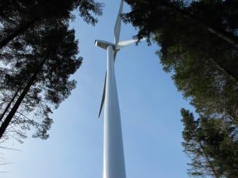 Invigning vindkraft Össjö 3