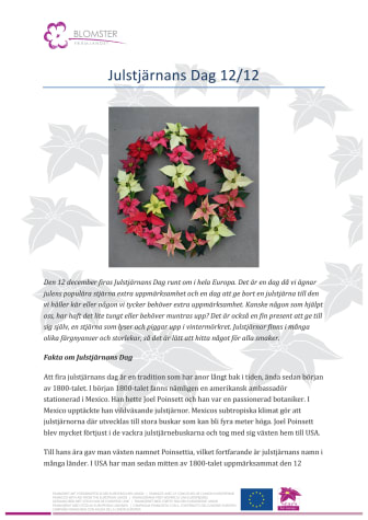 Julstjärnans dag 12/12