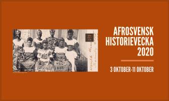 Afrosvensk historievecka