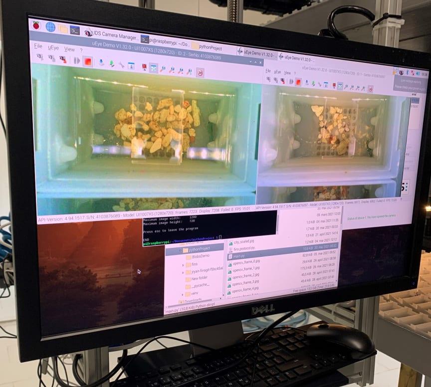Lobster Farm Monitoring