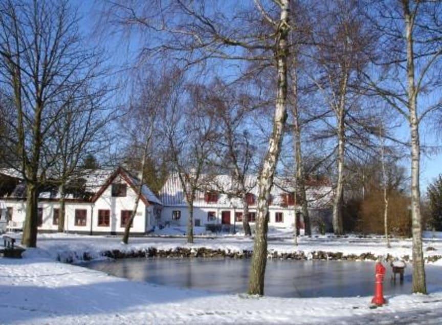 Vinter Mothsgården mellem