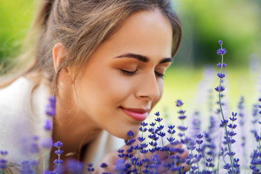 Weltdufttag: Am liebsten frisch duftend!