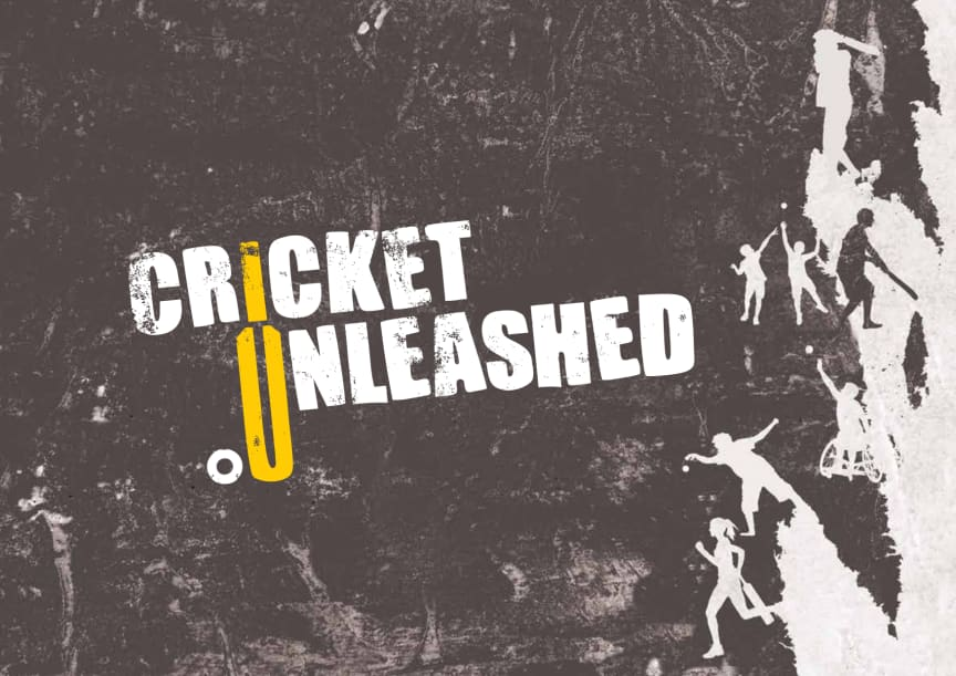 Cricket Unleashed - Detailed Plan