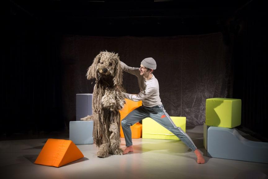 Vill ha hund med Tobias Ulfvebrand