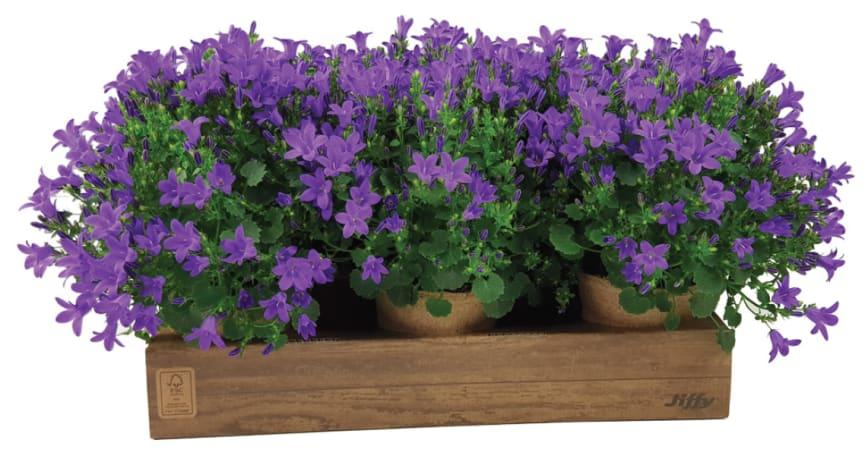 Jiffys bæredygtige emballage til deres organisk nedbrydelige blomsterpotter.
