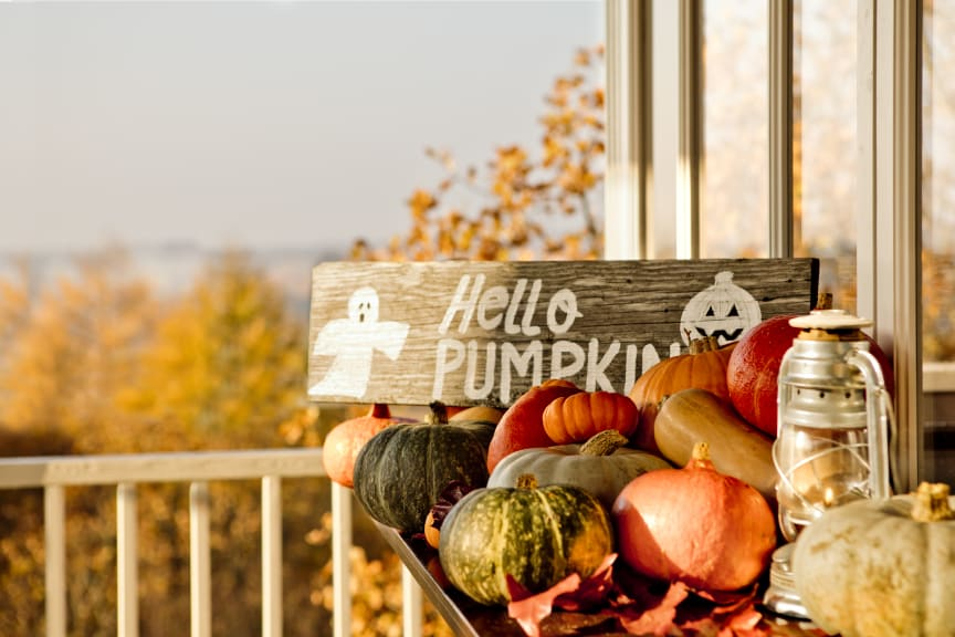 TheLodge_HelloPumpkin