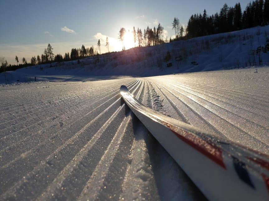 Veldig gode skiforhold