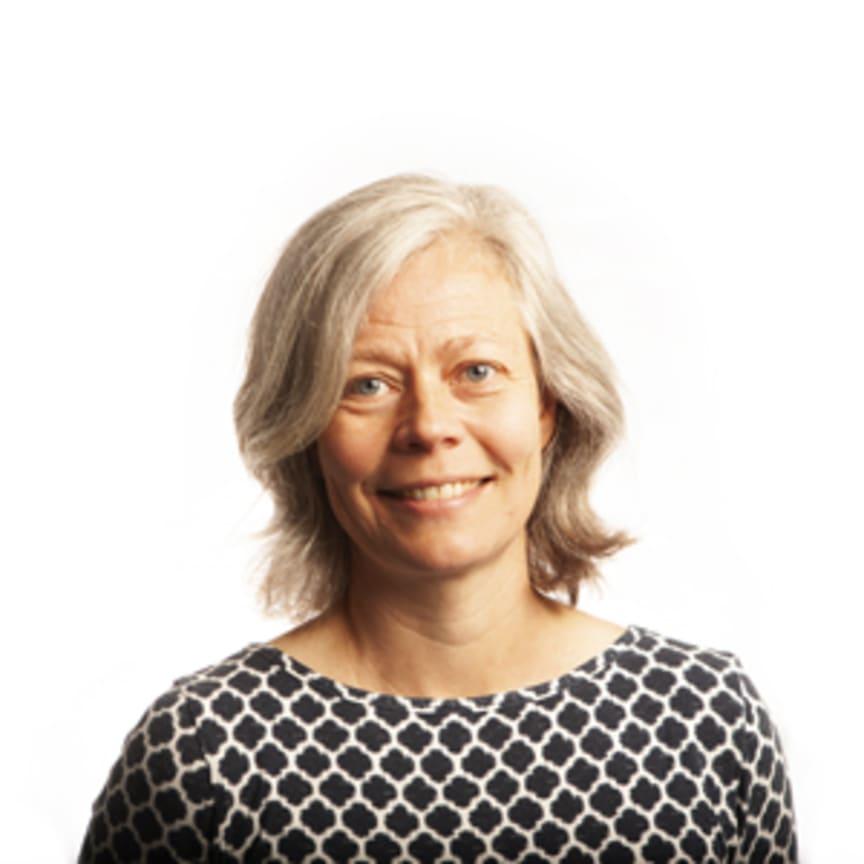 Karin Åkerman, analytiker