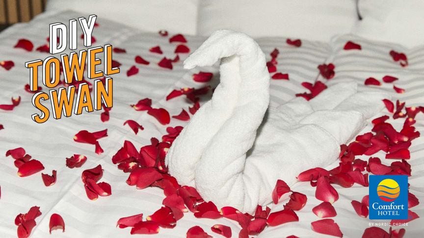 Comfort Hotel DIY Towel Swan