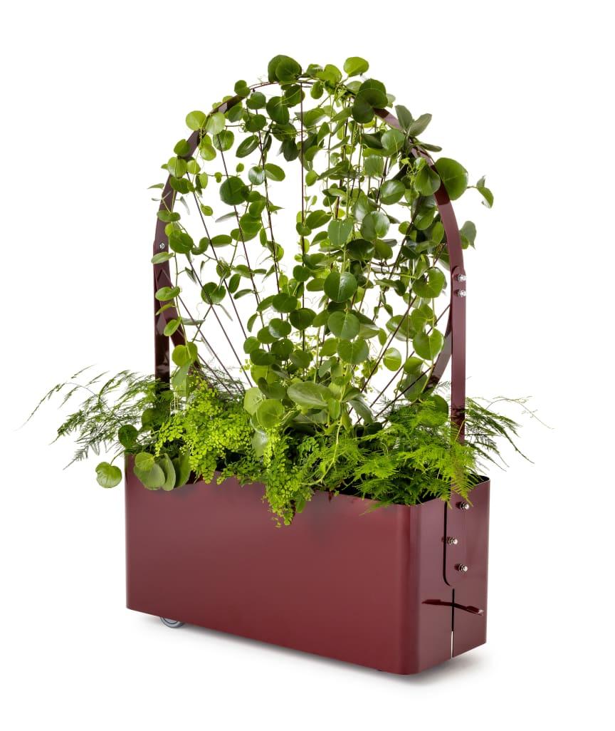 Gro planteringskärl / Planter, design Mia Cullin
