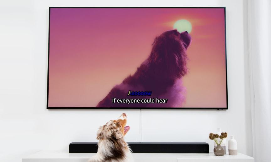 04_Dog Karaoke_TV