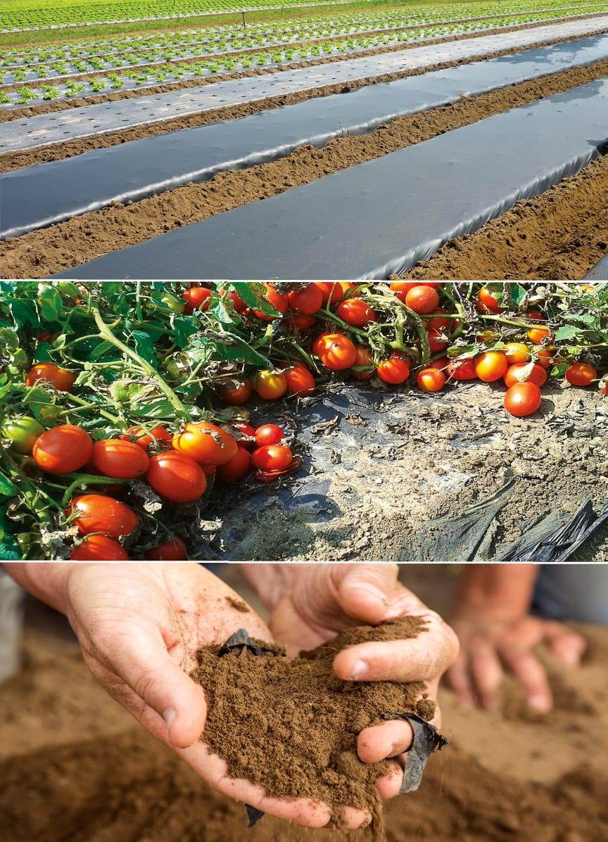 BASF bionedbrydelig landbrugsfilm 3