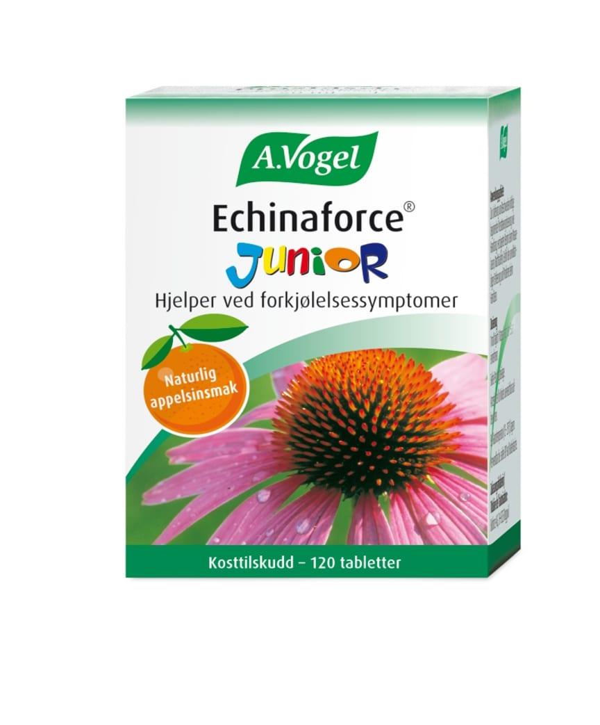 Echinaforce Junior Packshot